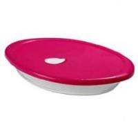 Assadeira Oval Com Tampa Plástica 2,5 Litros - 6514 - Nadir