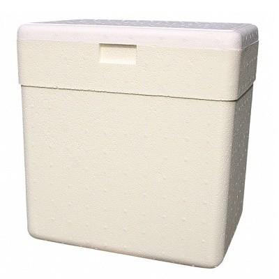 Caixa Térmica de 8 Litros P3 com Alça - 0075 - Isoterm